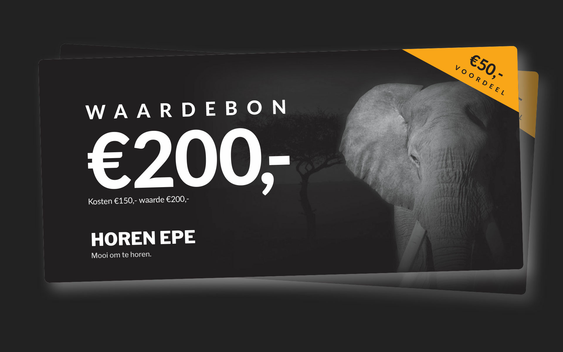 Waardebon-Horen-Epe t.w.v 200 euro